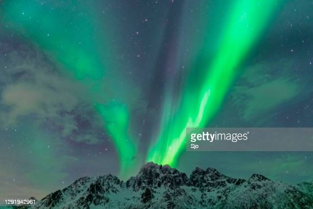 """northern lights over the snowy winter mountains in the lofoten in northern norway - """"sjoerd van der wal"""" or """"sjo"""" stock pictures, royalty-free photos & images"""