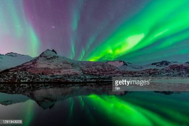 "northern lights over the snowy winter mountains in the lofoten in northern norway - ""sjoerd van der wal"" or ""sjo"" stock pictures, royalty-free photos & images"
