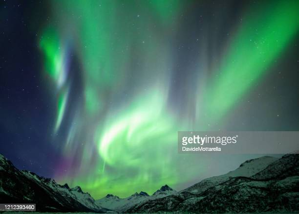 northern lights - north stock pictures, royalty-free photos & images