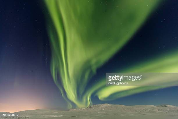 northern lights - marginata stock pictures, royalty-free photos & images