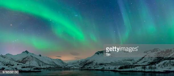 Northern Lights, polar light or Aurora Borealis in the night sky over the Lofoten islands in Northern Norway