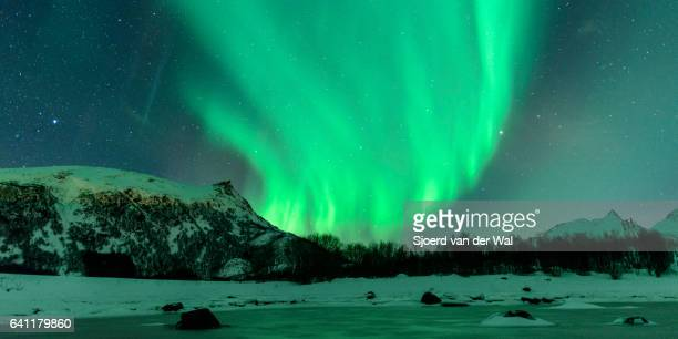 """northern lights, polar light or aurora borealis in the night sky - """"sjoerd van der wal"""" stock pictures, royalty-free photos & images"""