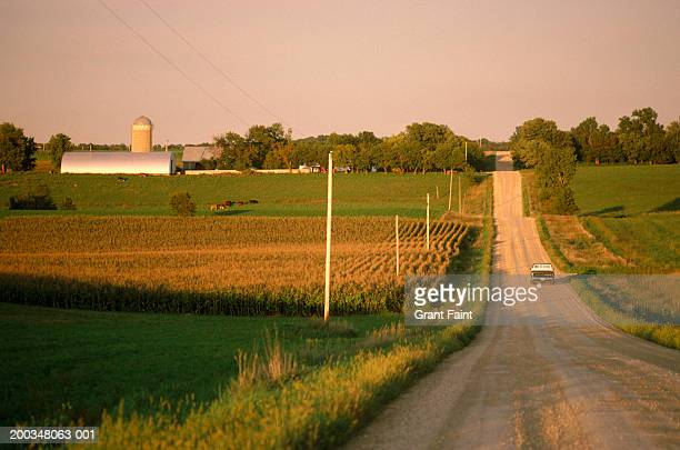 usa, northern minnesota, truck on gravel road, rear view - ミネソタ州 ストックフォトと画像