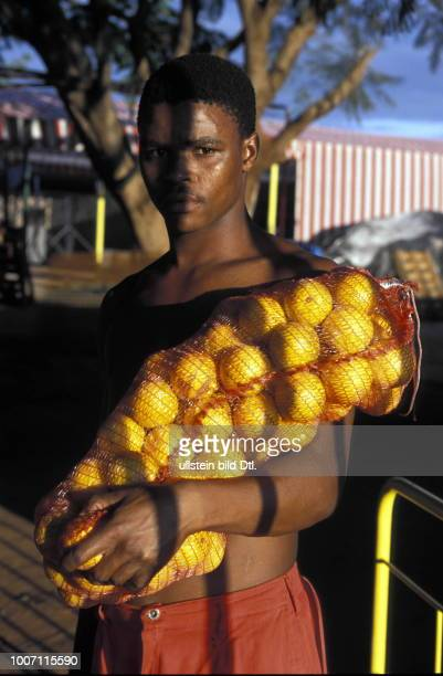 PACKING ORANGES SOUTH AFRICA Northern province A young man stood with a bag of oranges More pictures on this subject available on request CDREF00080