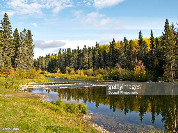 northern river in boreal forest - saskatchewan stock pictures, royalty-free photos & images
