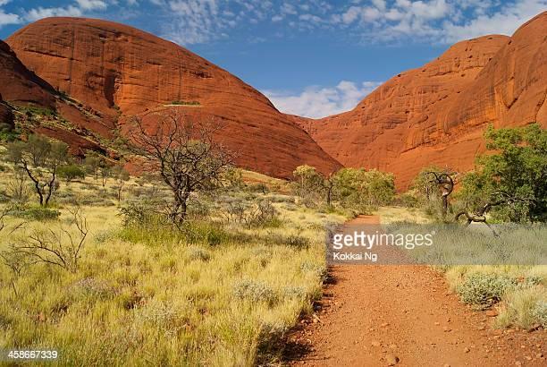 Northern Territory-Road in Richtung Kata Tjuta (Olgas