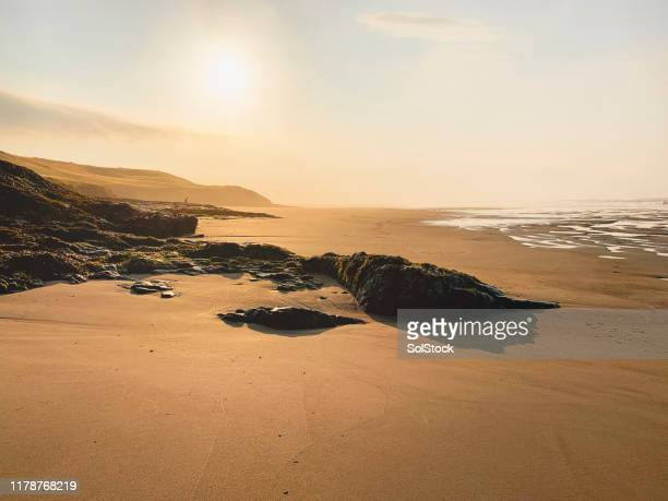 northumberland golden sands - northumberland stock pictures, royalty-free photos & images