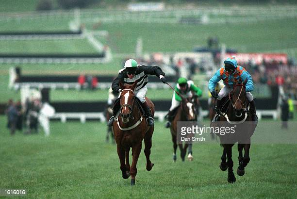 Nortons Coin races aginst Toby Tobias for first place during the Cheltenham Gold Cup held at the Cheltenham Race Course Cheltenham England during...