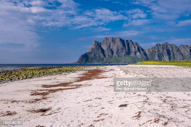norway, europe, lofoten islands - utakleiv, one of the most scenic beaches in lofoten - finn bjurvoll stock pictures, royalty-free photos & images