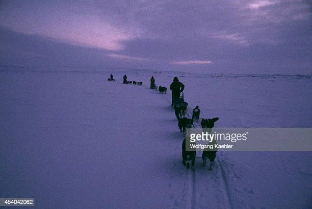 Norway Finnmark Near Karasjok Midwinter Around Noon Dog Teams