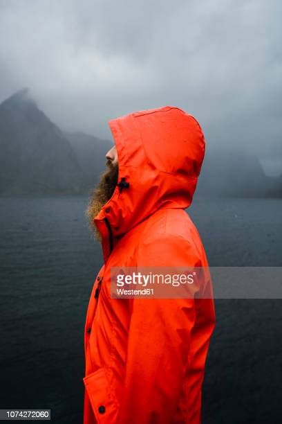 norway, lofoten, profile view of man with full beard at the coast - chaqueta fotografías e imágenes de stock