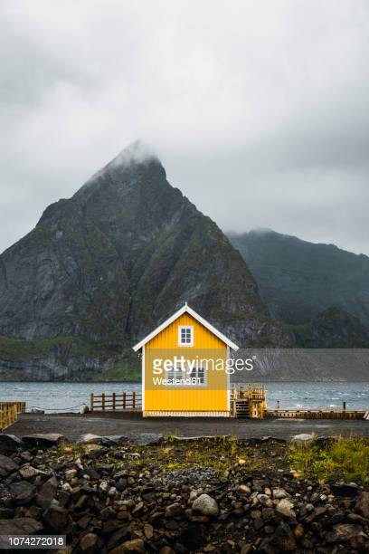 norway, lofoten, remote yellow house at rocky coast - isoliert stock-fotos und bilder