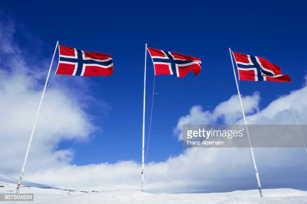 norway national flags at the polar circle - norwegian flag stock pictures, royalty-free photos & images