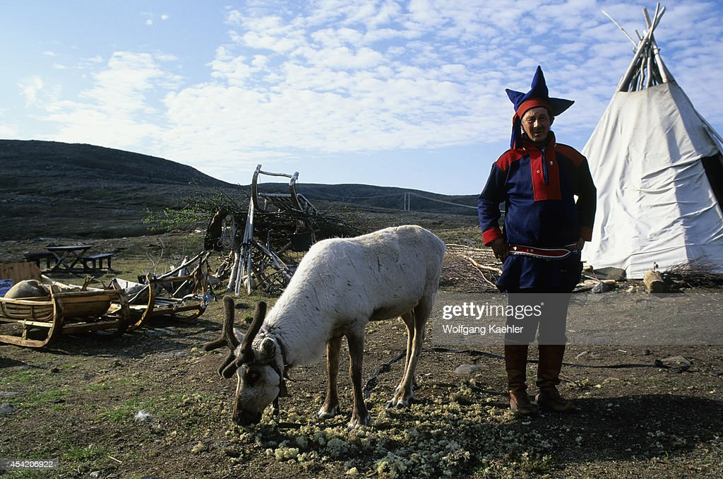 Norway, Near Honningsvag, Sami Man (laplander) With Reindeer.