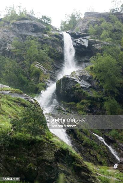 norway - mojado stock pictures, royalty-free photos & images