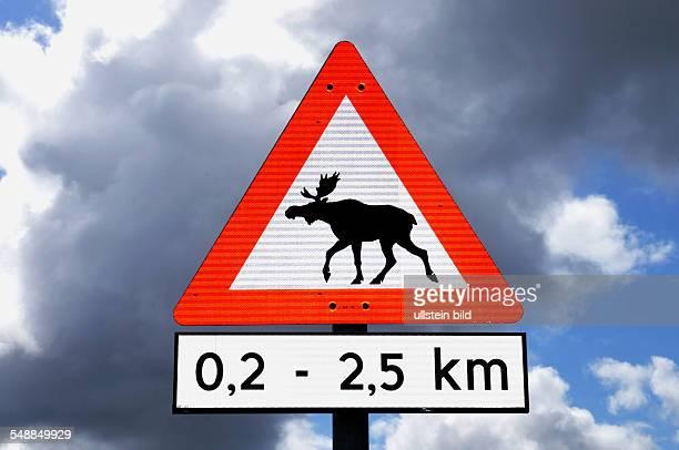Norway - traffic sign moose crossing