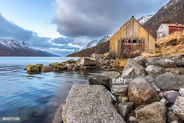 norway, troms, ersfjordbotn - insel stock pictures, royalty-free photos & images