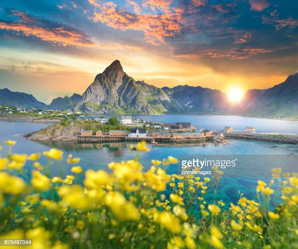 norway , view of lofoten islands in norway with sunset scenic - norway stock pictures, royalty-free photos & images