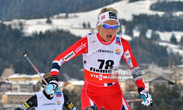 Norway's Therese Johaug competes during the Women's 10 km Free Individual event at the Nordic Skiing World Championships in Val di Fiemme Italy 26...