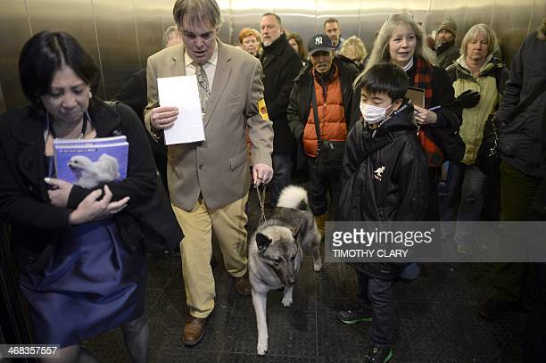 A Norwegian Elkhound rides to the benching area at Pier 92 and 94 in New York City for the first day of competition at the 138th Annual Westminster...