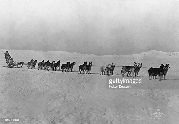 Norwegian explorer Roald Engelbrecht Amundsen beginning his departure for the North pole in 1920 Amundsen was the first to navigate the Northwest...