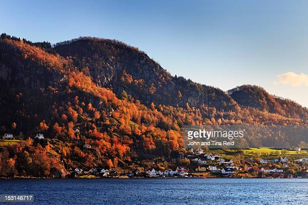 Norwegian fjord village drenched in autumn