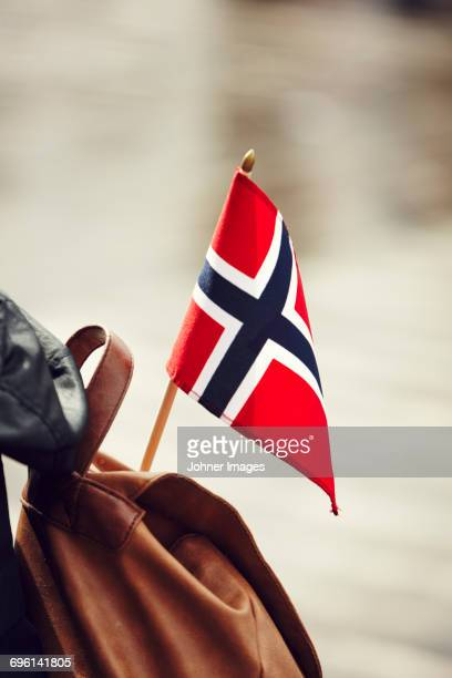 norwegian flag on backpack - norwegian flag stock pictures, royalty-free photos & images
