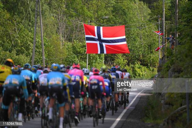 Norwegian Flag / Peloton / Landscape / Fans / Public / during the 9th Tour of Norway 2019 Stage 3 a 1797km stage from Lyngdal to Kristiansand /...