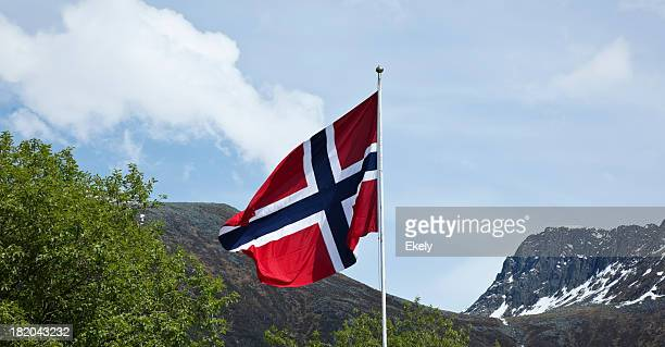 norwegian flag. - norwegian flag stock pictures, royalty-free photos & images
