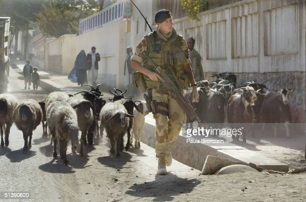 Norwegian ISAF soldier from Recce Squadron 3 patrols on October 4 2004 in Kabul Afghanistan as election officials get ready for the Presidential...
