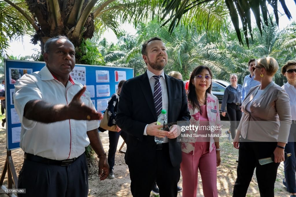 MYS: Norwegian Minister Trade And Industry Deligation visit Palm Oil Palm Plantation In Malaysia