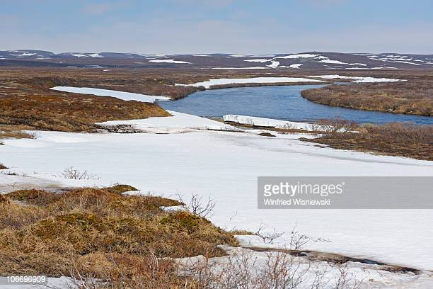 Norwegian mountain tundra