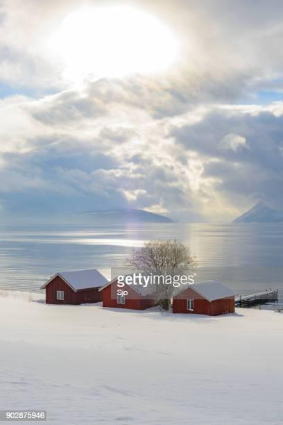 Noors werpt op de oevers van een Fjord in het noorden van Noorwegen in de winter.