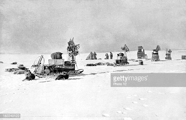 Norwegian South Pole expedition lead by Roald Amundsen in 19111912 A camp of supply depot on the Great Barrier The exhausted dogs are lying aroung...