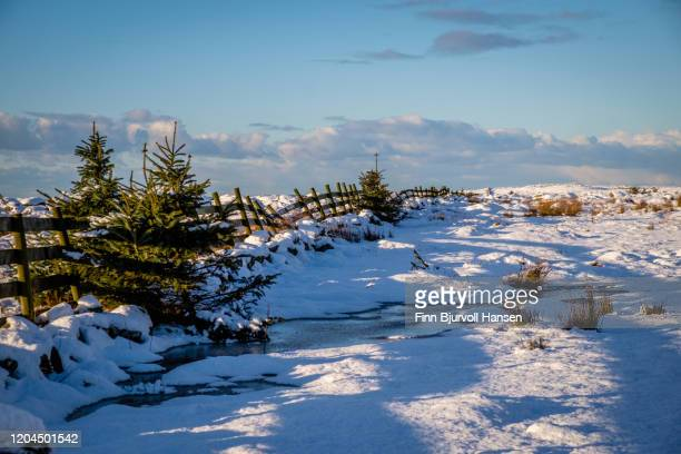 norwegian winter landscape - finn bjurvoll stockfoto's en -beelden