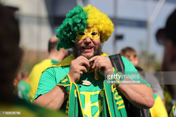 Norwich fan dressed as the 'Farke Knight' in a mask and an afro in the club colours ahead of the Premier League match between Norwich City and...