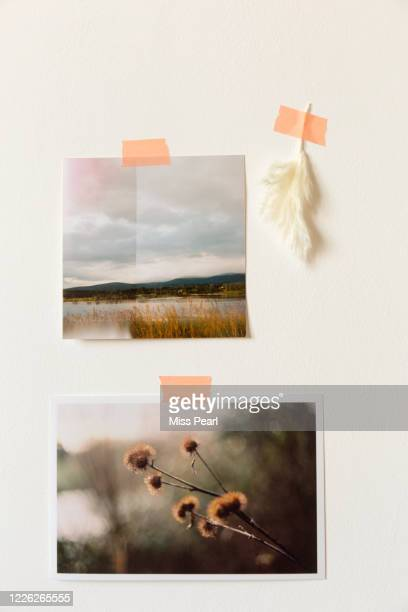 nostalgic printed photos taped to wall - kildare stock pictures, royalty-free photos & images