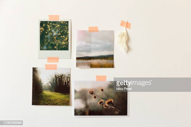 nostalgic printed photos taped to wall - memorial stock pictures, royalty-free photos & images