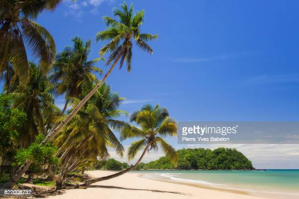 nosy be - madagascar stock photos and pictures