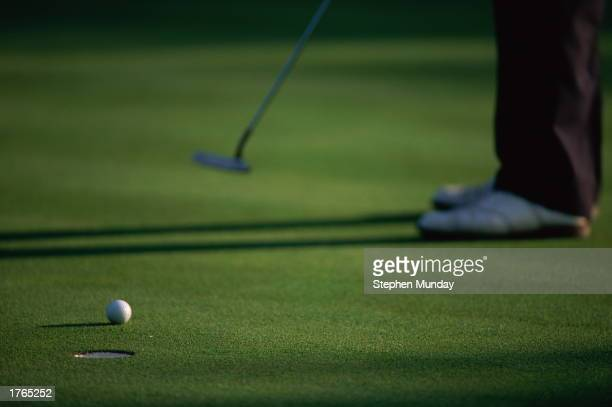 Golfer on putting green, hitting ball towards hole, low section