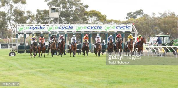 Not to Know ridden by Chris Caserta begins in Save the Date Emmetts John Deere BM64 Handicap at Warracknabeal Racecourse on August 04 2017 in...