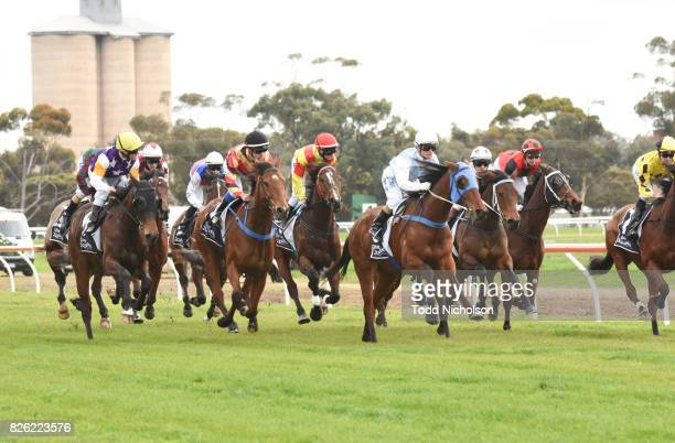 Not to Know ridden by Chris Caserta first time round in Save the Date Emmetts John Deere BM64 Handicap at Warracknabeal Racecourse on August 04 2017...
