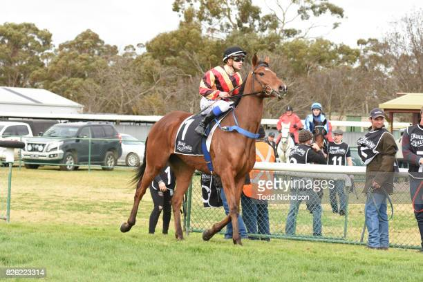 Not to Know ridden by Chris Caserta goes out for Save the Date Emmetts John Deere BM64 Handicap at Warracknabeal Racecourse on August 04 2017 in...