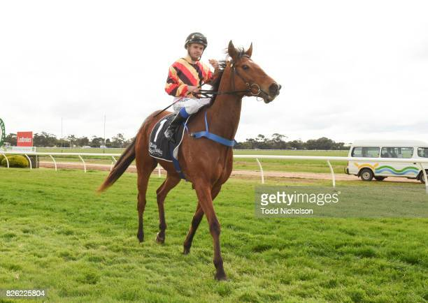 Not to Know ridden by Chris Caserta returns after Save the Date Emmetts John Deere BM64 Handicap at Warracknabeal Racecourse on August 04 2017 in...