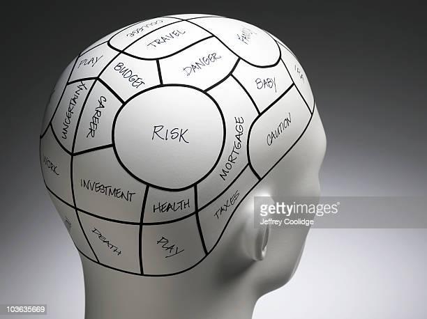 Notated Phrenolgy Head