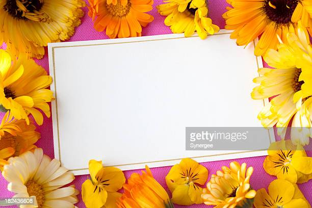Note card with flowers