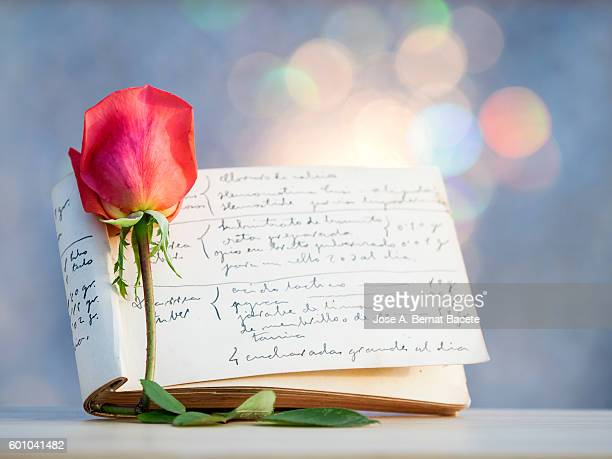 Note-pad of you notice personal former writing with pen of ink and a rose