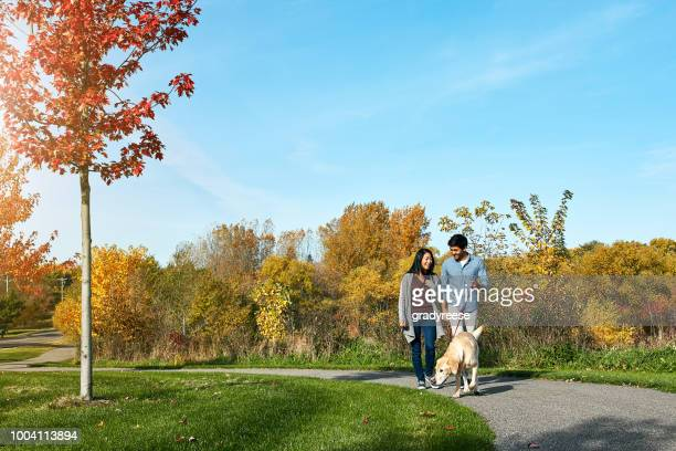 Nothing beats a walk with our four-legged child