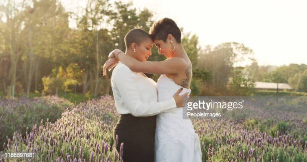 nothing else matters right now - civil partnership stock pictures, royalty-free photos & images