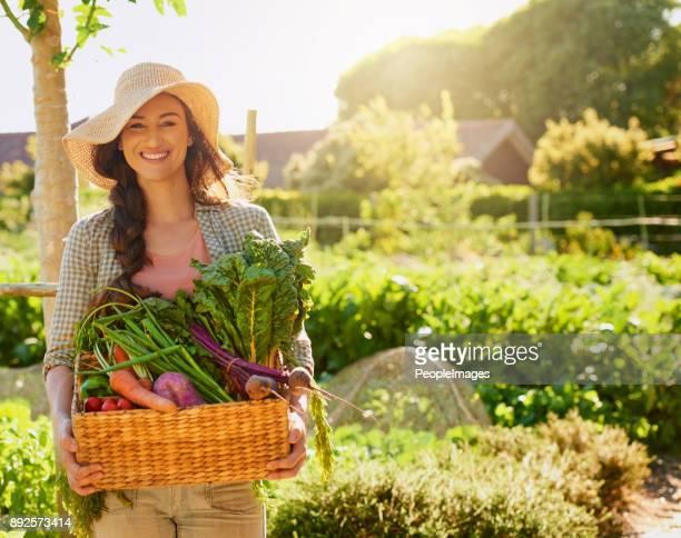 Niets gemodificeerde genetisch over deze groenten